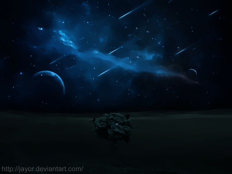 Night Tree [Photoshop Cs5] by JAYOR