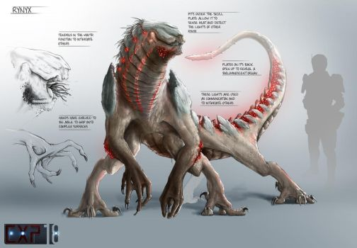 Rynyx Creature Concept Sheet by franeres