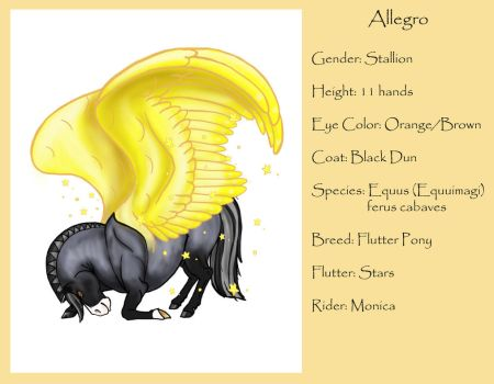Allegro by Wildfire4o4