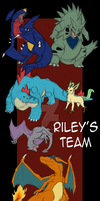 Riley's Pokemon Team by XSpiritWarriorX