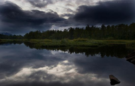Last Days Of Summer by BoholmPhotography