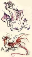 Colouring Pencil Dragons by CharlesDW