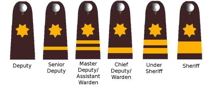Rank Insignia favourites by delta321 on DeviantArt