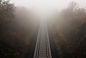 Fog Rail by steeph-k
