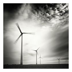 When the wind blows by anoxado