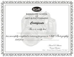 Certificate by darklord977