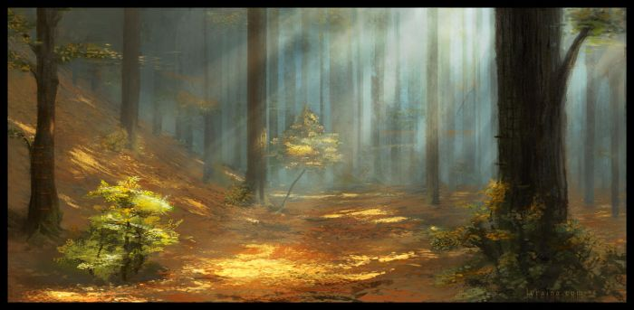 Temperate Forest by Lyraina