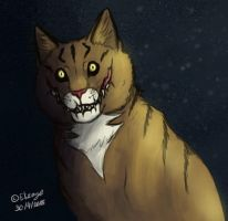 Meet Cheshire Cat by CPT-Elizaye