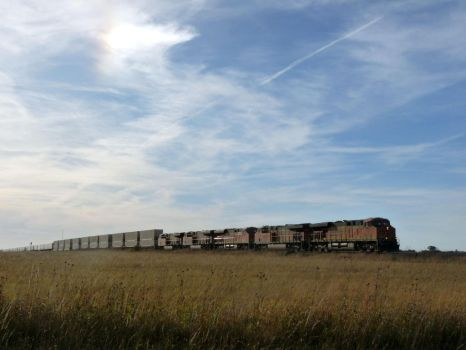 Railfan Trip: 10-19-17: Sun Dog by lonewolf3878