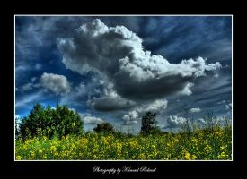On a Cloudy Day 2 by zozzy1980