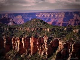 Grand canyons......Utah...54.... by gintautegitte69