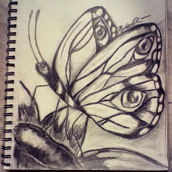 Butterfly by Kylee-DC