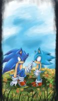 Sonic Generations by AmytheRose