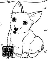 Whats this? Corgi puppy by Stars-of-Night