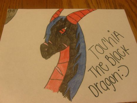 toshia the black dragon by saphira1415