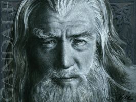 Gandalf the Gray by Cynthia-Blair