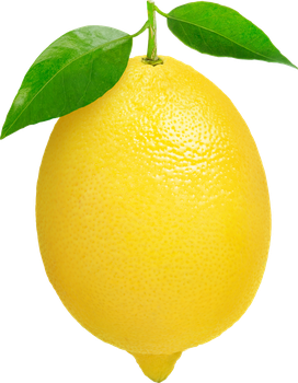 Lemon on a transparent background. by PRUSSIAART