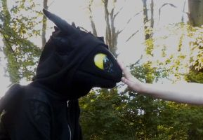 How To Tame Toothless by creanima