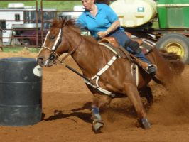 Barrel Racing stock by aqhakt