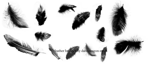 feather brushes by dark-dragon-stock