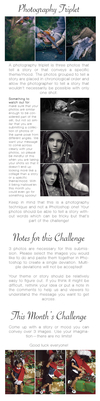 October 2014 Challenge - Photography Triplet by starobots