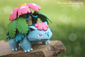 Mega Venusaur [+VIDEO!!]