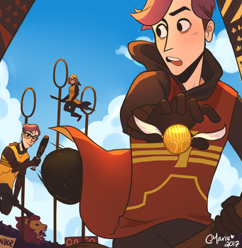 Quidditch Match of the Century by TheGingerMenace123
