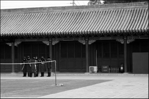 Forbidden City - 8 by Cleonor