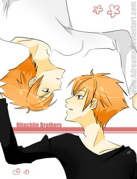 Hitachiin Brothers by 4Dreams