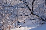 Winterland Path Stock by philippeL
