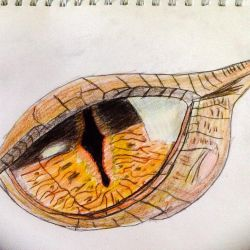 Smaug's eye by Lovetheblue