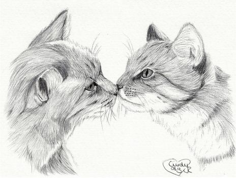 Cats Kiss II by Cindy-R