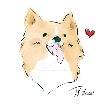 Vizlis (support homeless animals project) by TwoFacedWolf