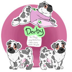 Darby by TurkFish