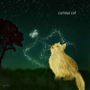 curious cat by Drezdany