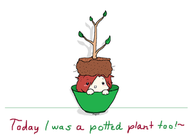 I was a potted plant too by MirandaMaija