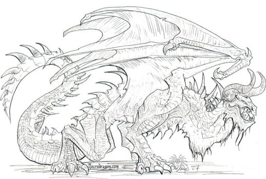 More Dragon Lineart by drakhenliche