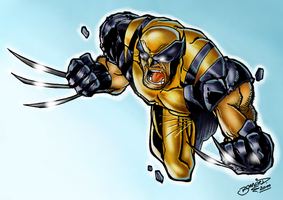 Wolverine by Barberi Colorjob by BouncieD