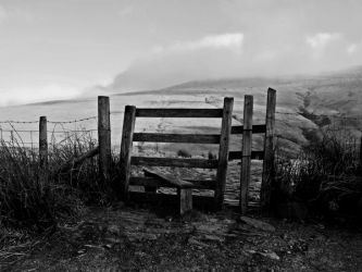 Gate with a View by Teakster