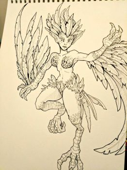 Inktober Day 11 - Harpie by SarahRichford