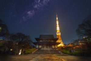 Tokyo Tower by tmz99