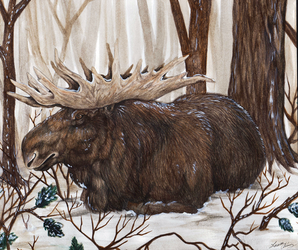 Winter Moose by Gray-Ghost-Creations