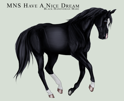 MNS Have A Nice Dream by chaoticXinsane