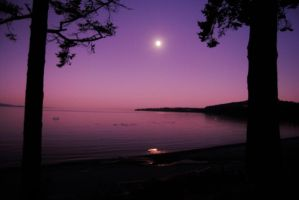 Pink moonrise by staroflife51