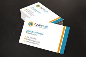 Clean Business Card by xstortionist