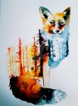 fox forest by parparlyla