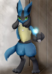 Master Lucario by Lekisceon