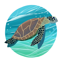 sea tortle by sendmeapeach