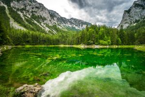 Shaded Green IV by hannes-flo