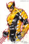 Wolverine by ToddNauck